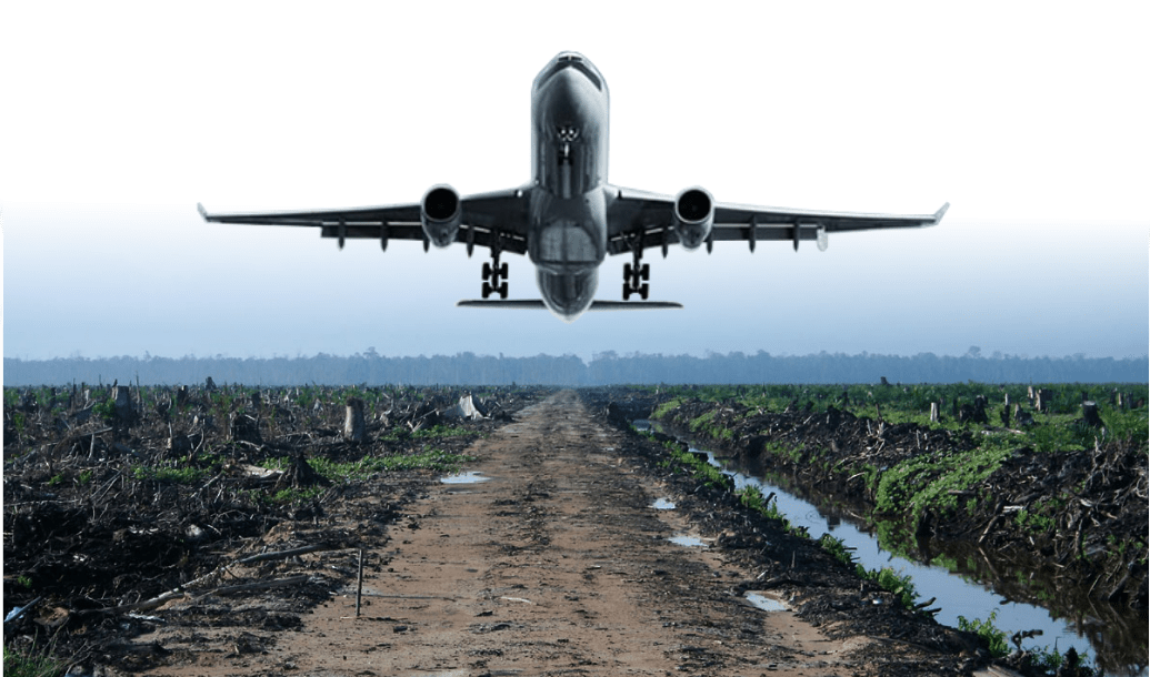 Indonesia seeks to get palm oil used as jet fuel in U S , France